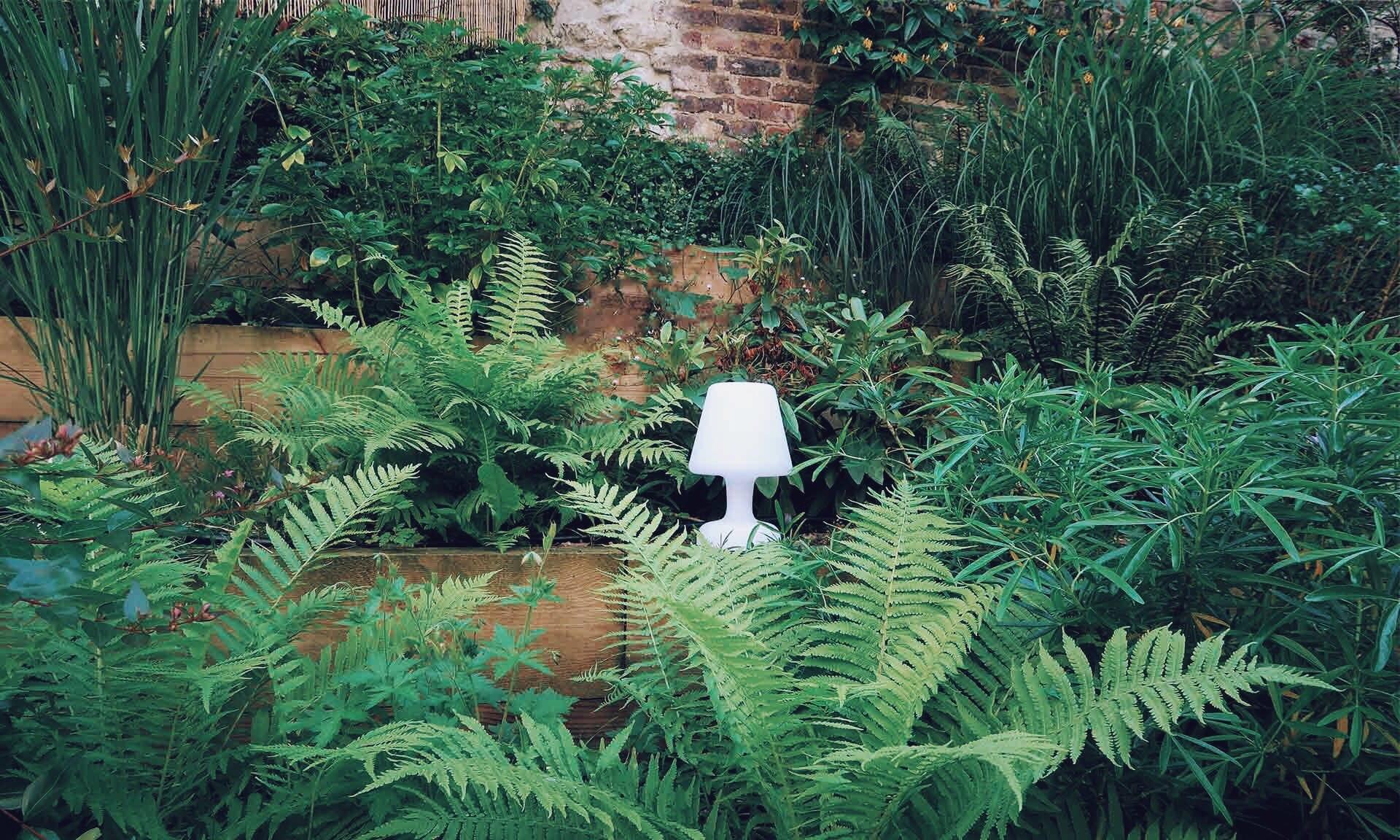 01_Nordscape_accueil_jardin-vivaces-gradines-1