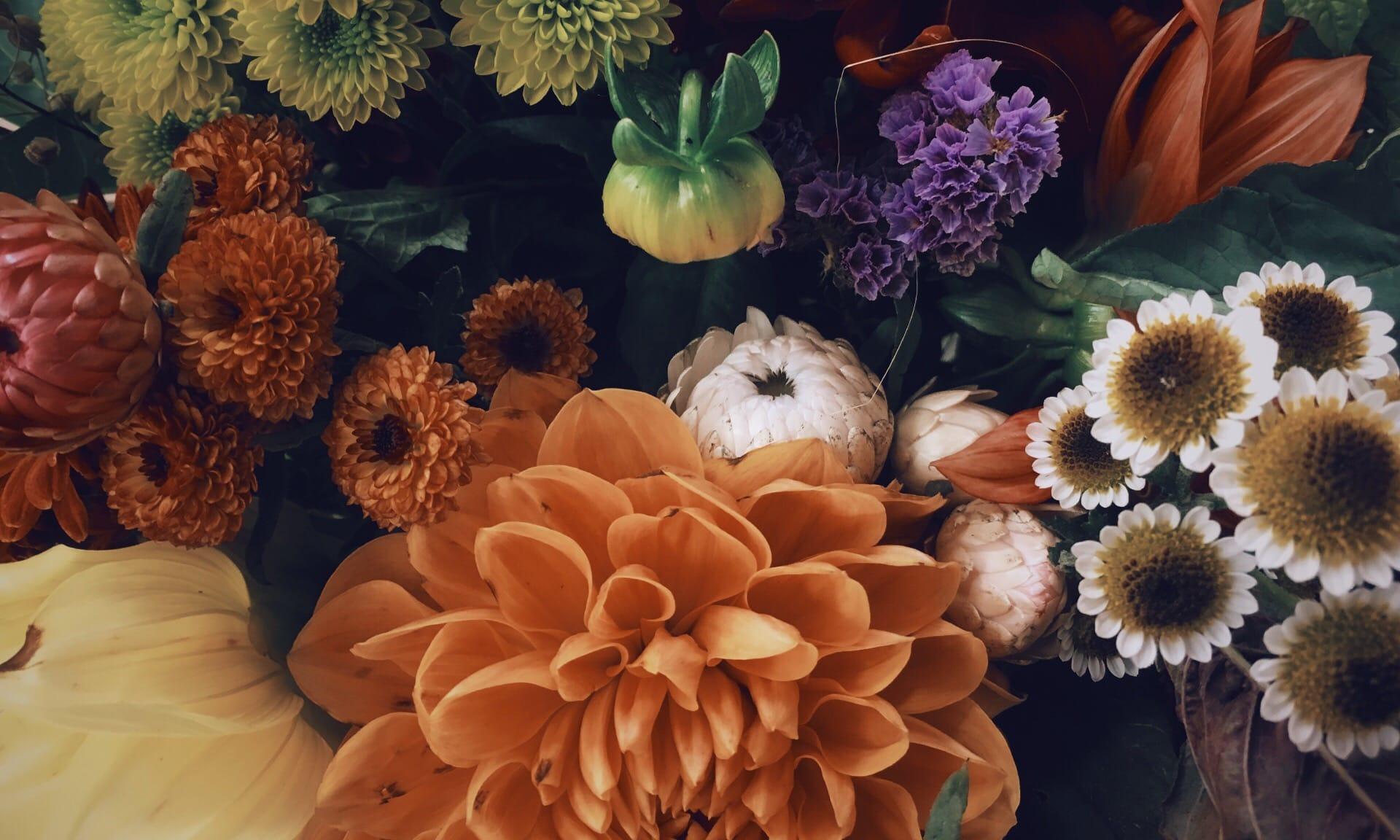 01_Nordscape_evenement_bouquet