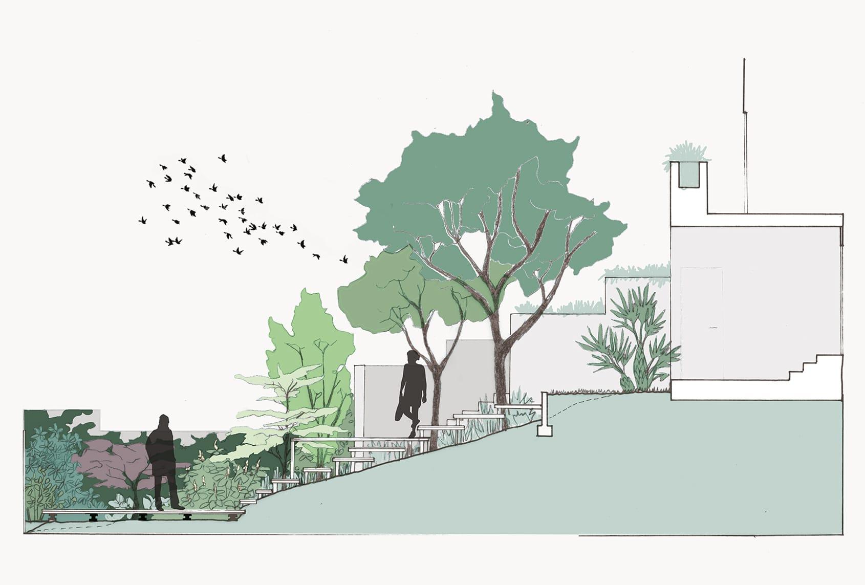 02_Nordscape-plan-coupe-esquisse-jardin