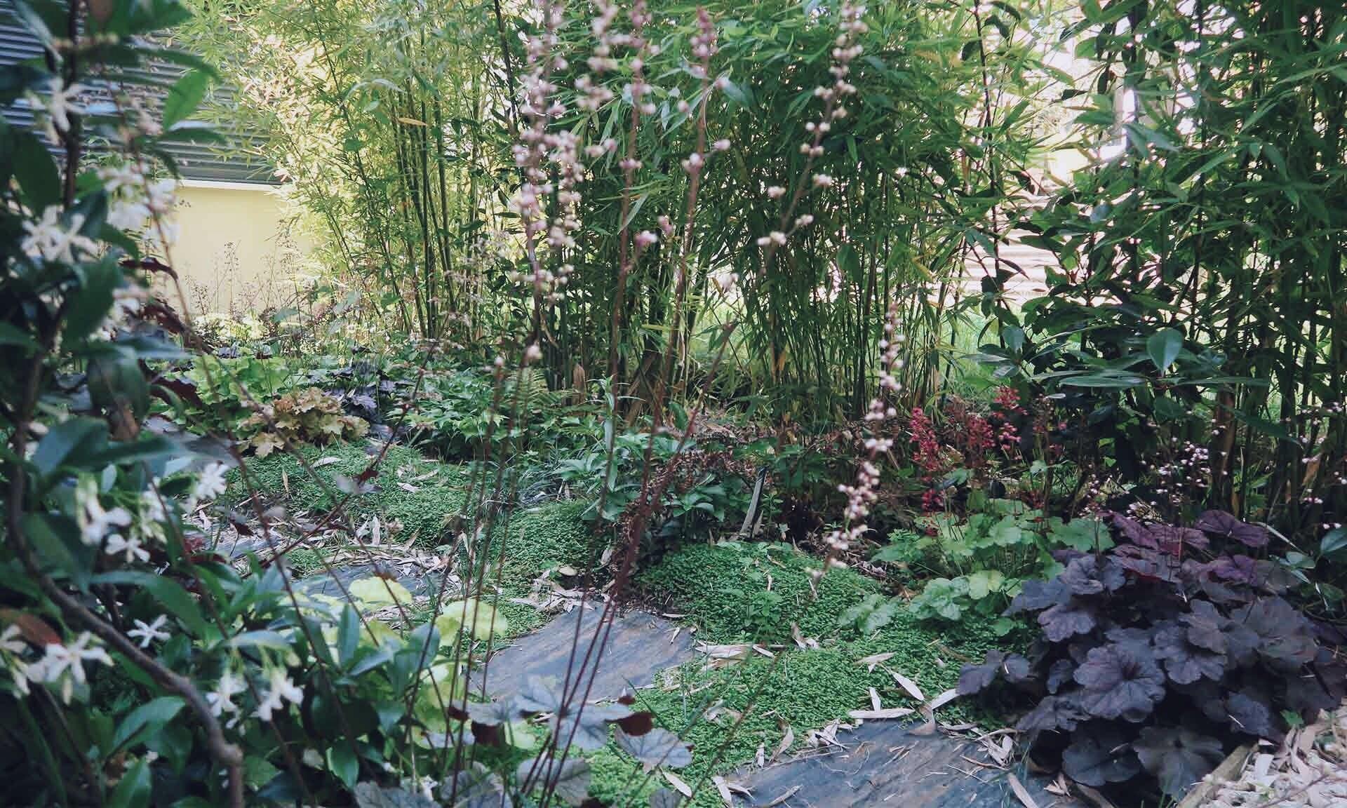02_Nordscape_accueil_jardin-vivaces-chemin-ardoise-1