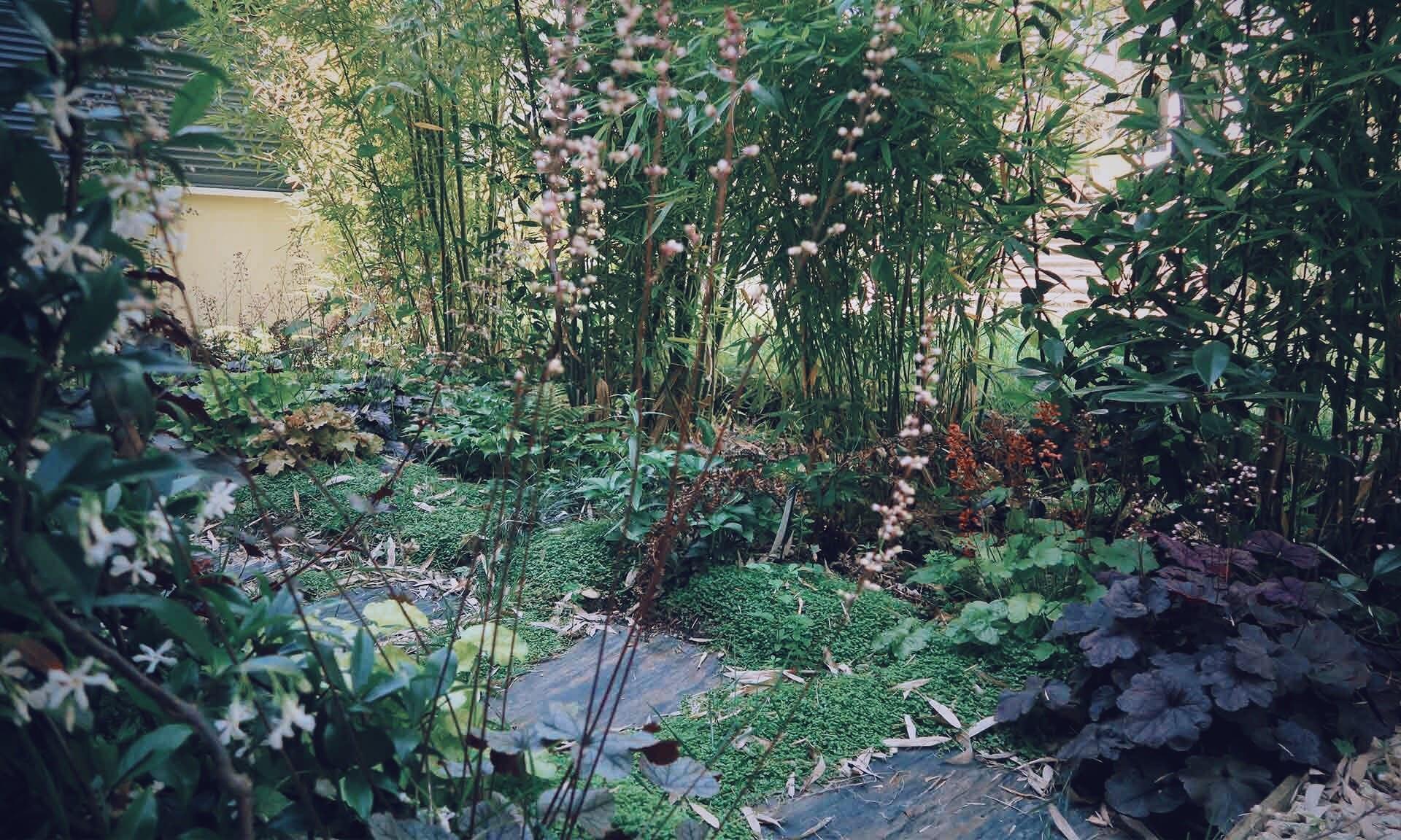 02_Nordscape_accueil_jardin-vivaces-chemin-ardoise-2