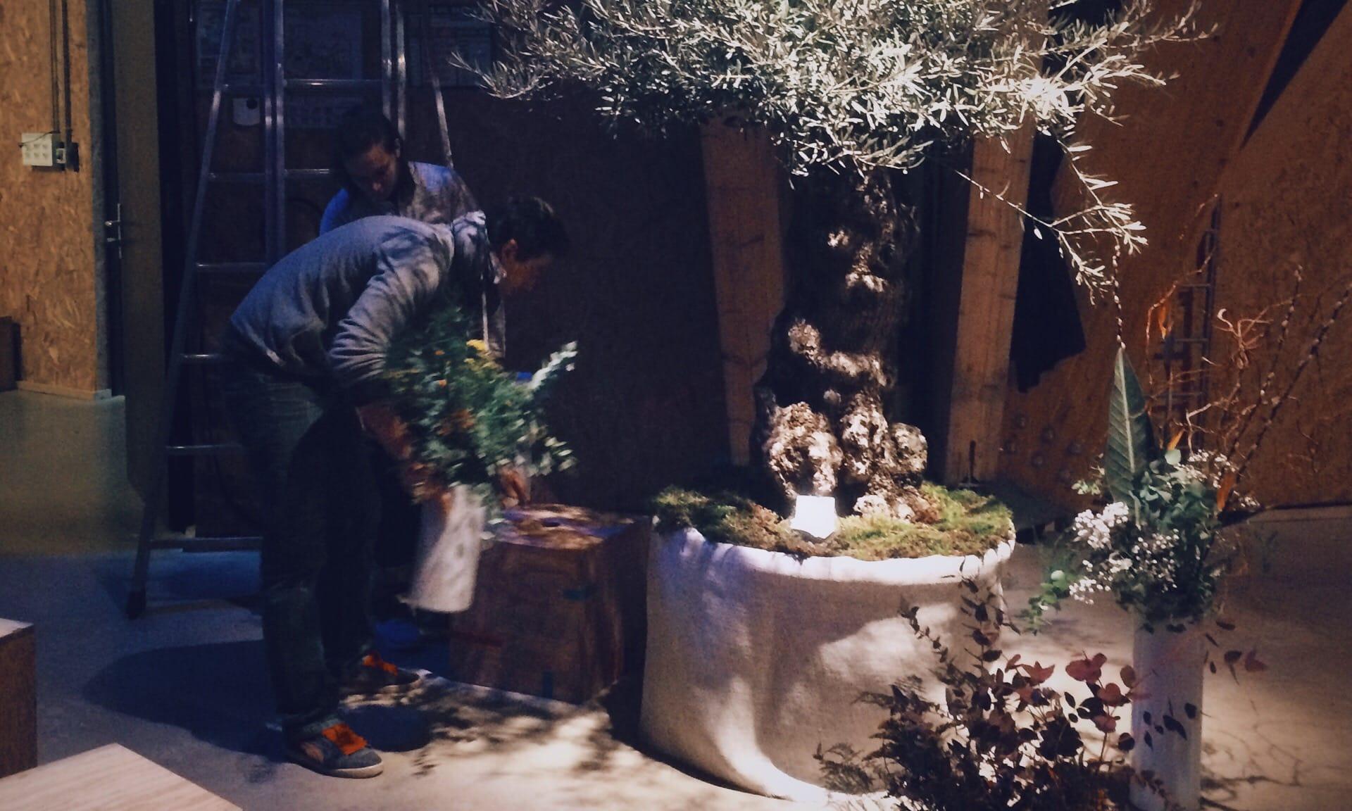 02_Nordscape_evenement-location-plante