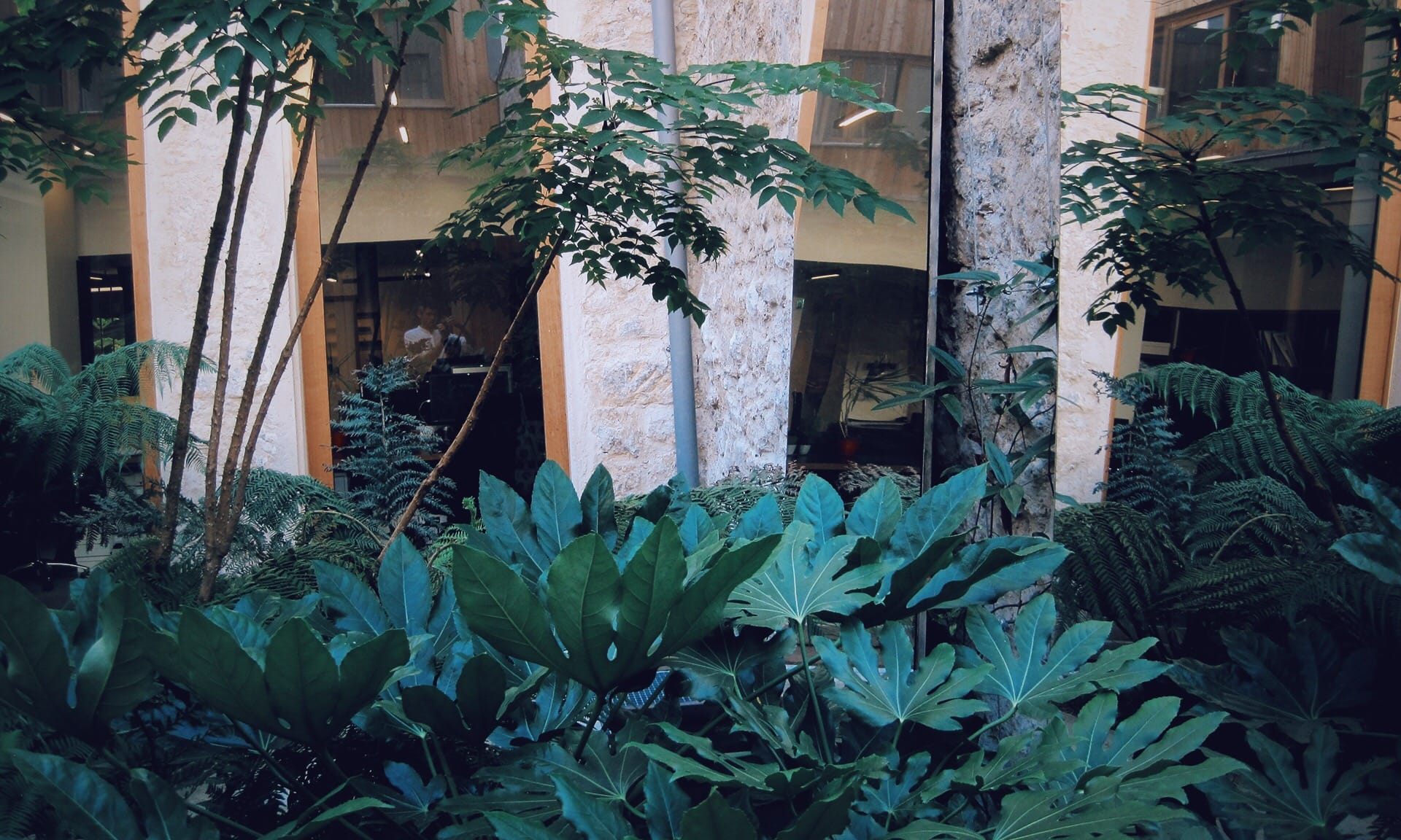 02_Nordscape_patio-jardin-miroirs