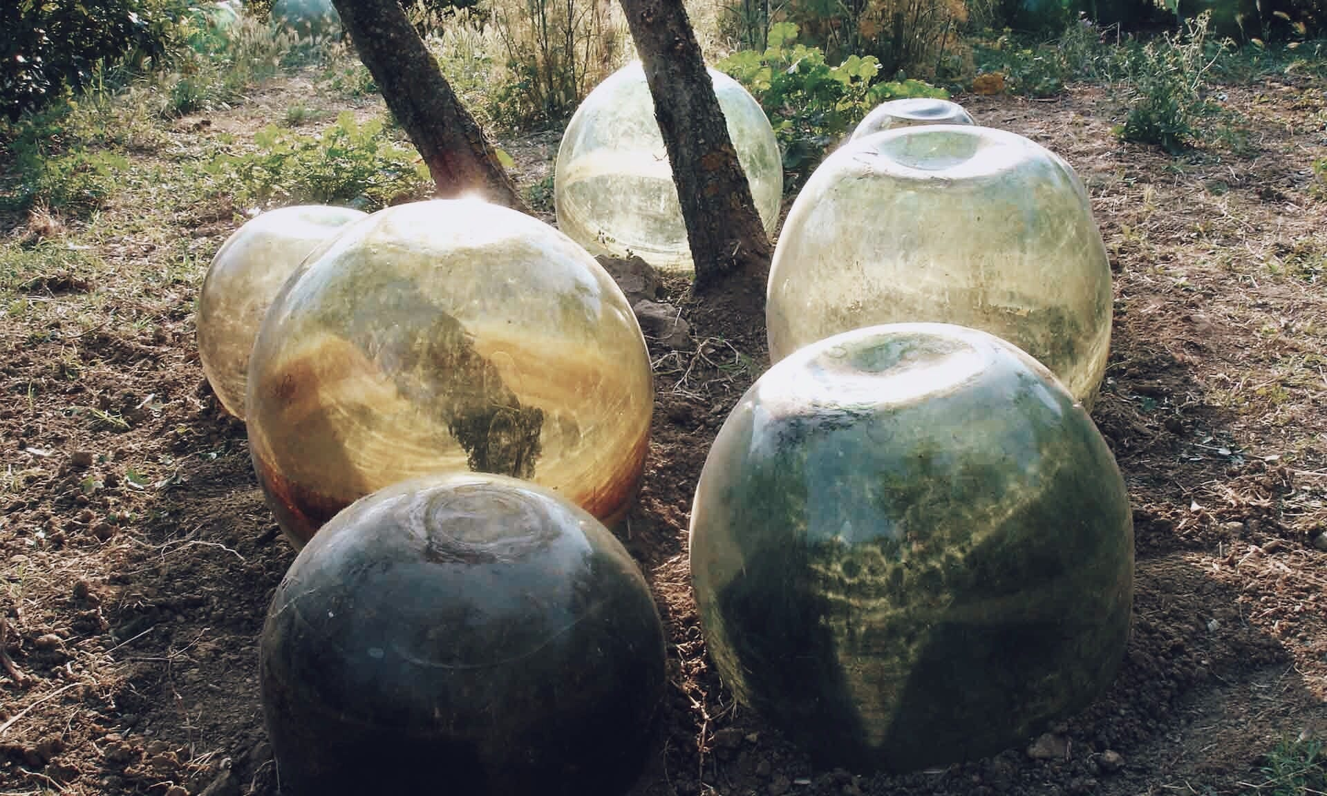 03_Nordscape_acceuil_jardin-bulle-verre-1