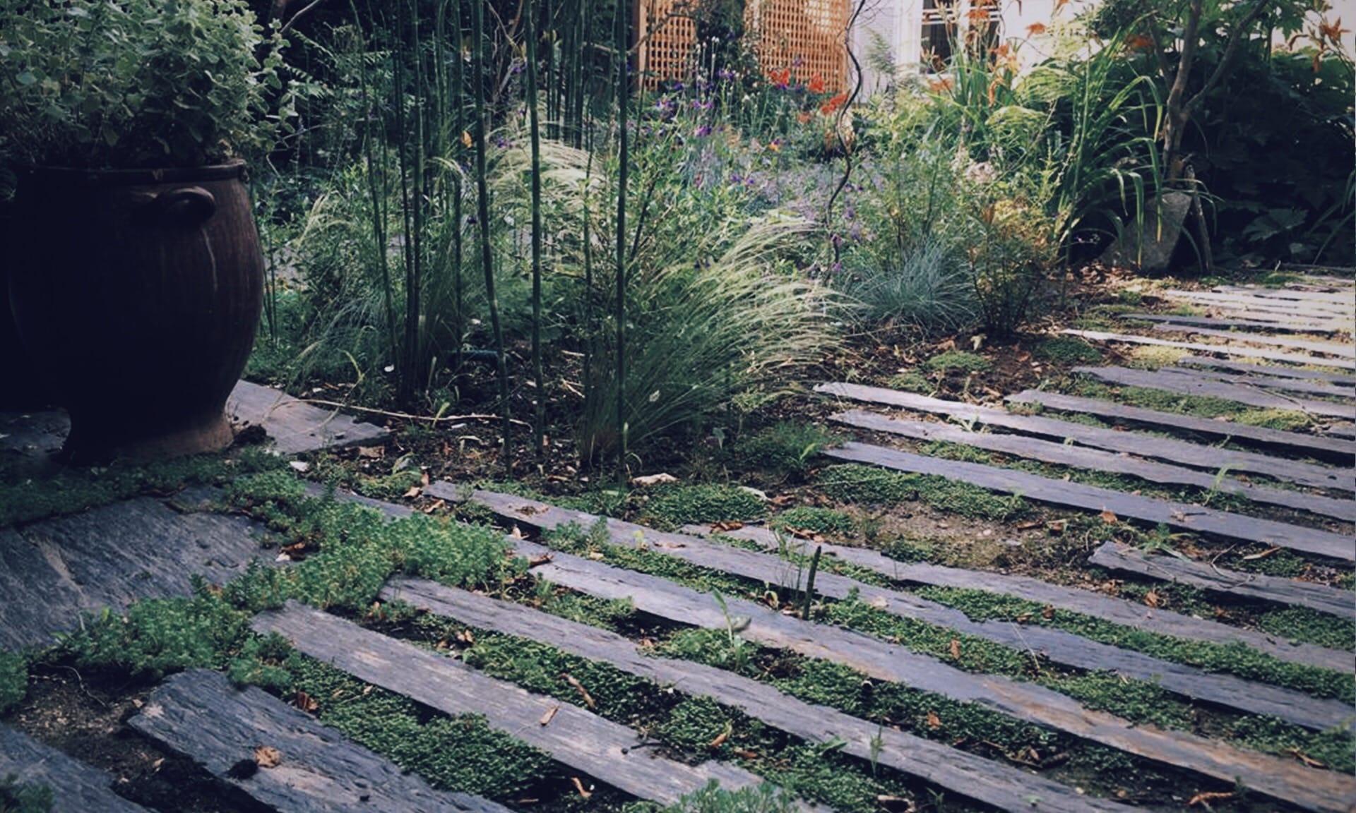 03_Nordscape_chemin-de-shiste-jardin-vivace