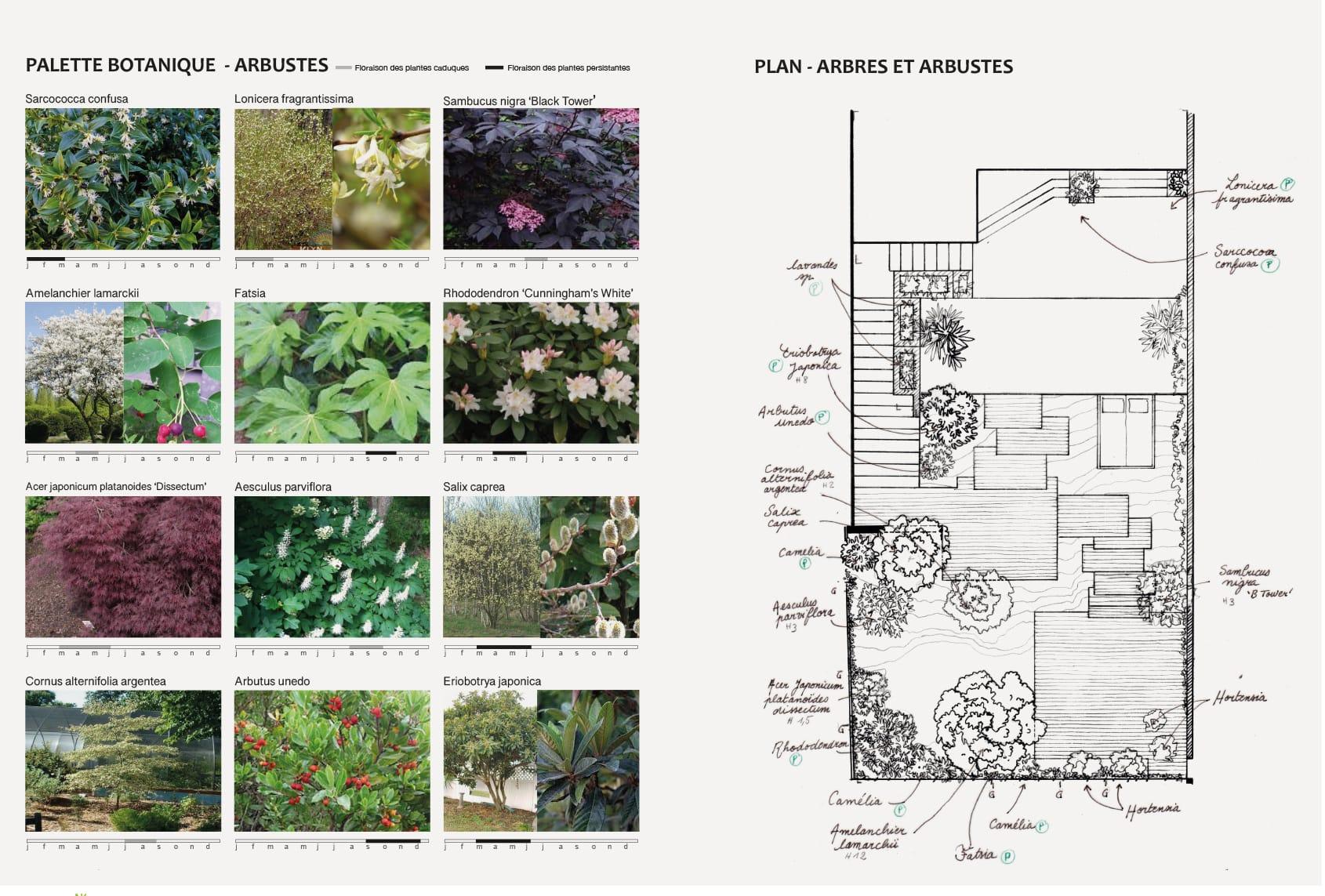 03_Nordscape_esquisse-palette-botanique-plan-plantation-jardin