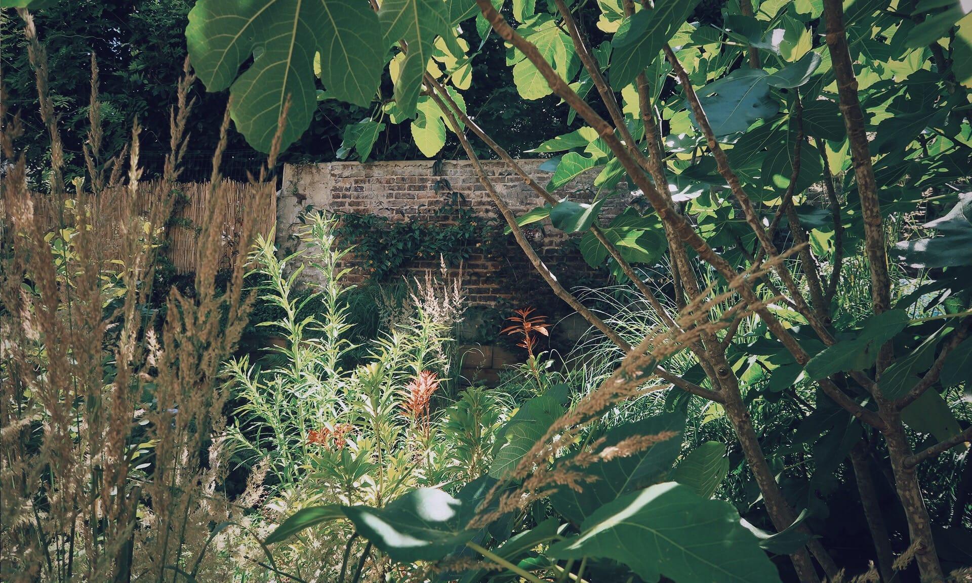04_Nordscape_jardin-gradines-pente-vivaces-1