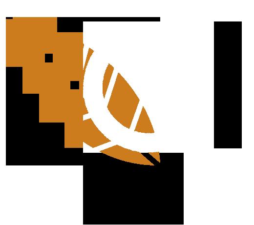 logo-visit